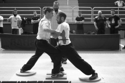 III Spanish International Push Hands Open 2017