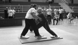 III Spanish International Push Hands Open 2017