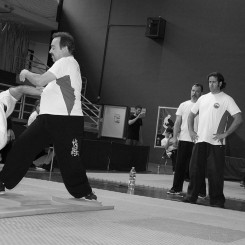 Spain Tuishou Open 2017
